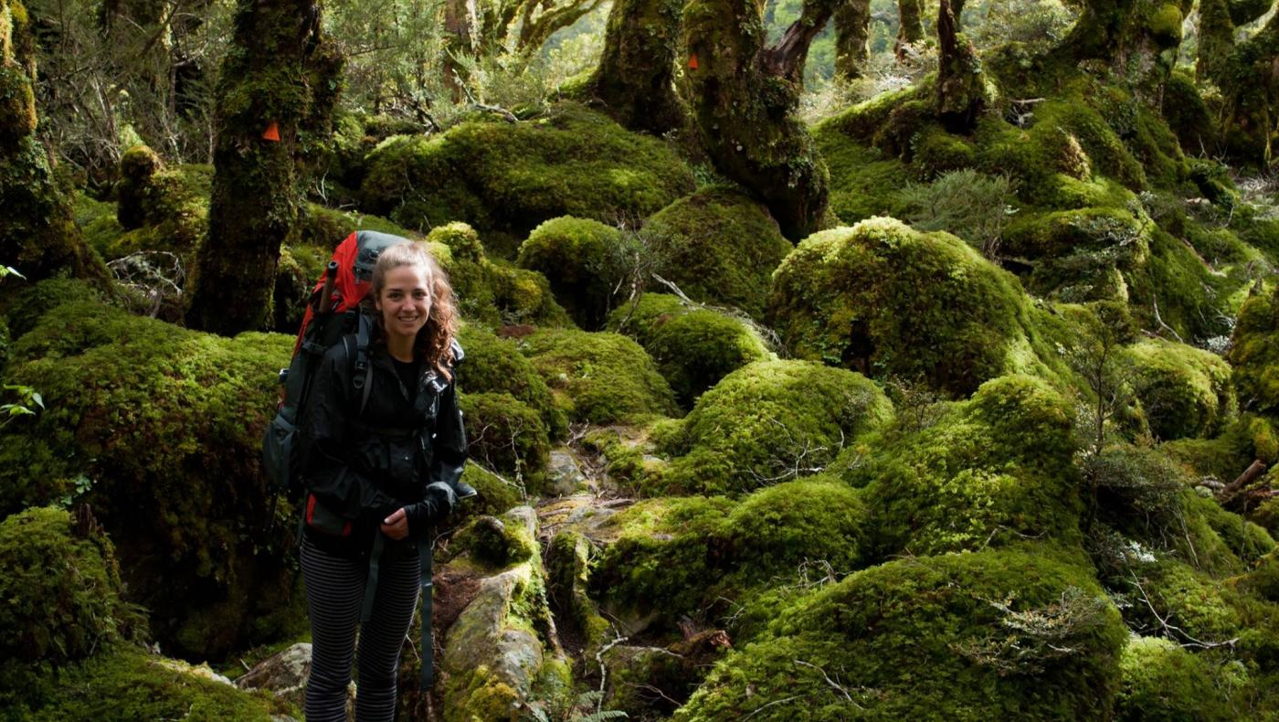 Hiker in Routeburn Moss Forest