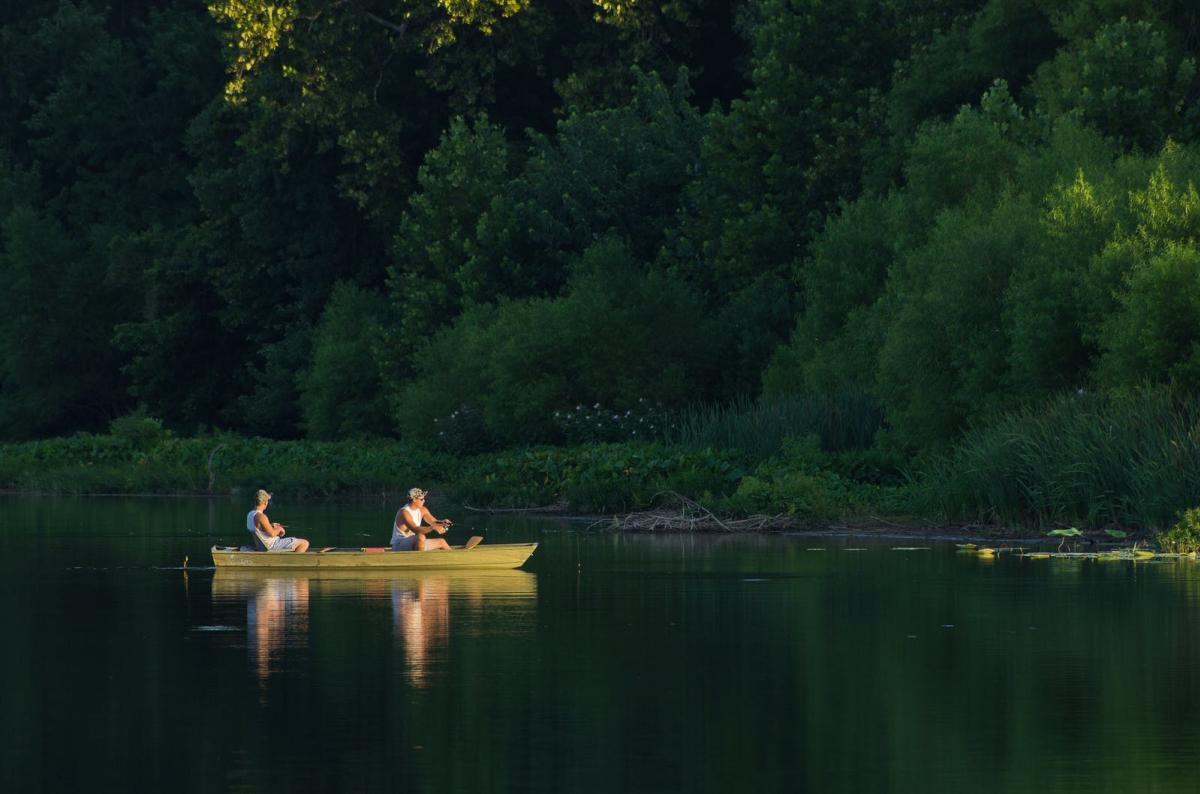 lake springfield fishing