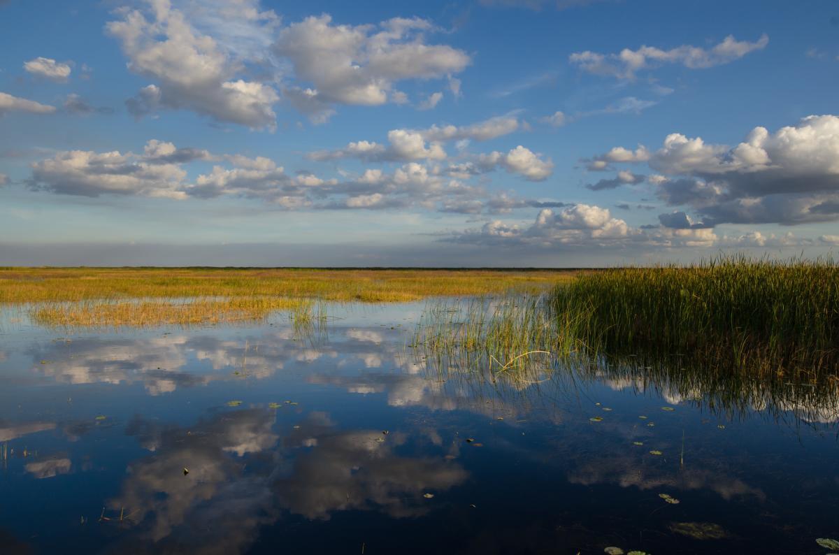 Caloosahatchee River and Lake Okeechobee