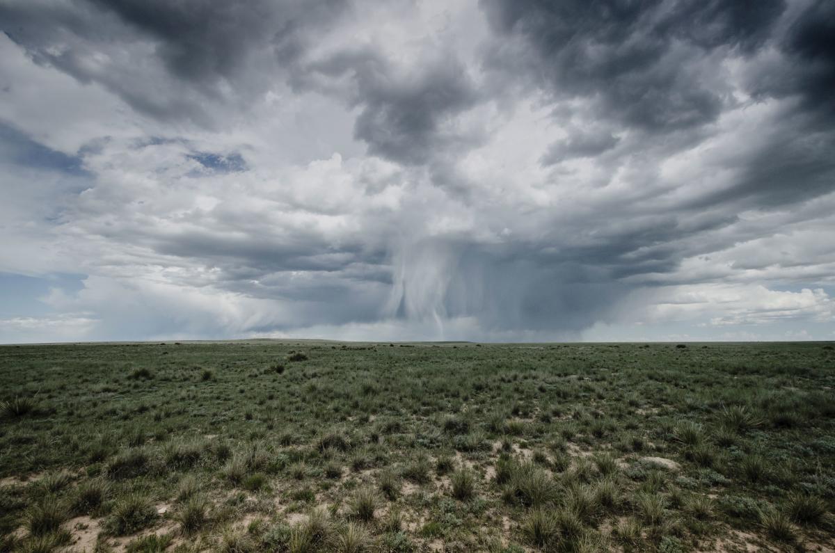 Walking rain sweeps the high plains, cooling the grasslands