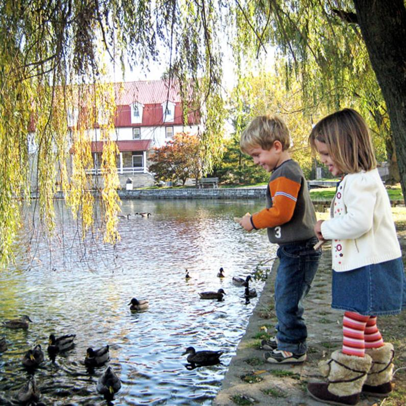Young children feeding the ducks at Children's Lake