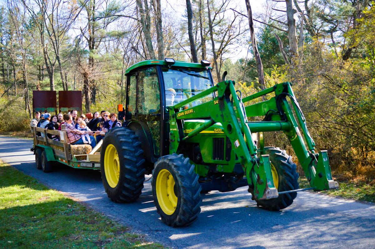 Tractor Hay Rides at Fall Furnace Festival