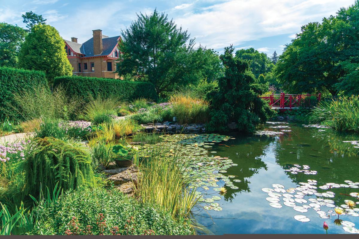 A calm pond within the confines of Allen Centennial Garden