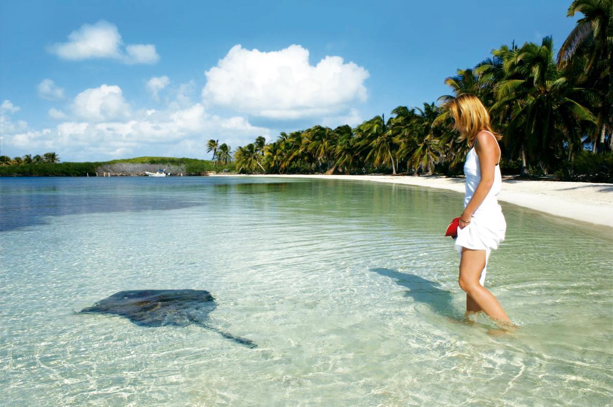 Isla Contoy - Naturaleza