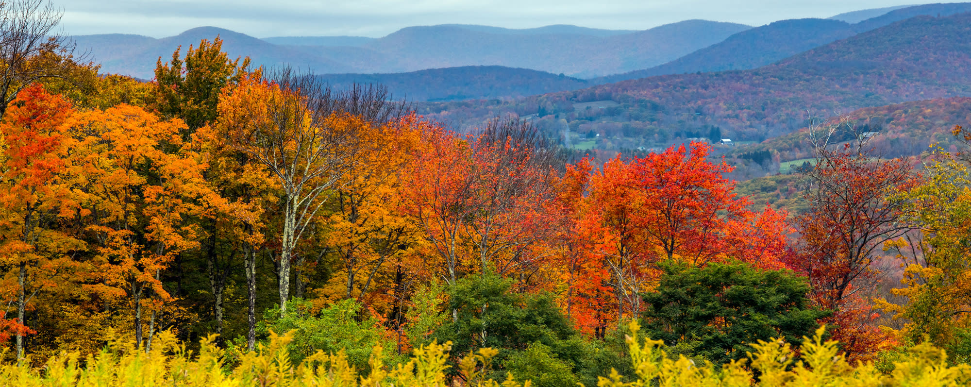 A fall view from Belleayre Mountain