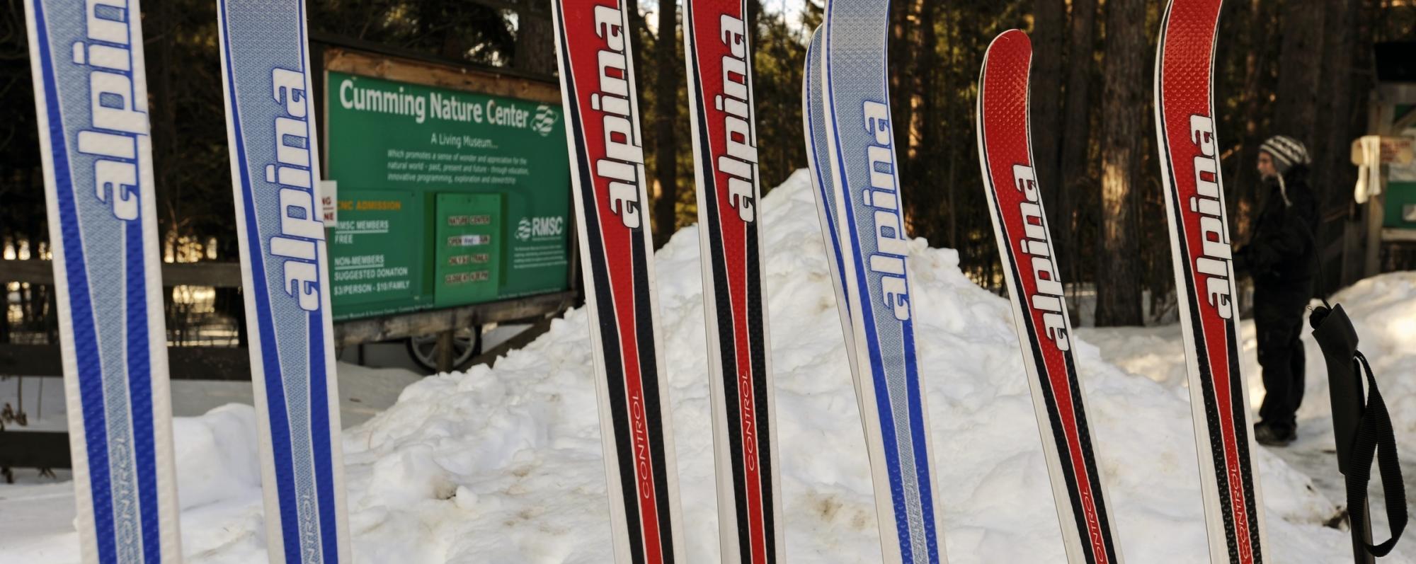 Seasons Winter - Skijoring