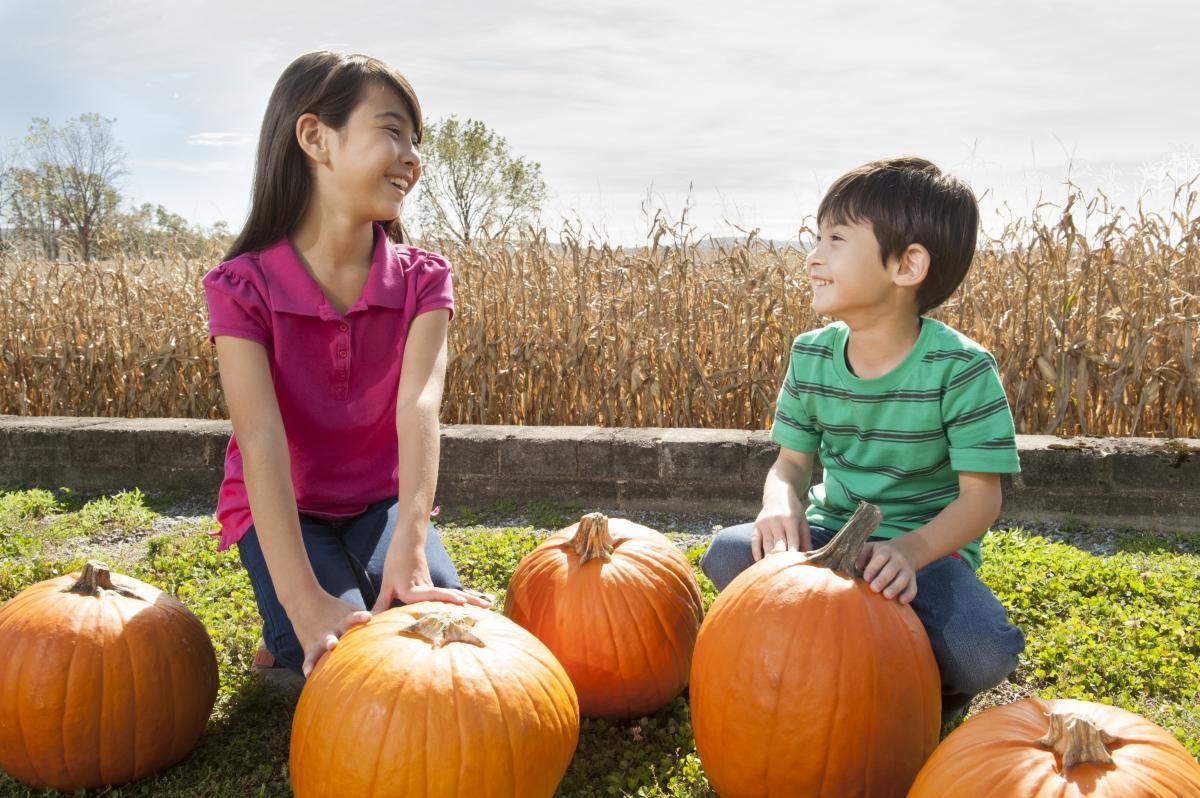 Boiling Springs Pumpkins
