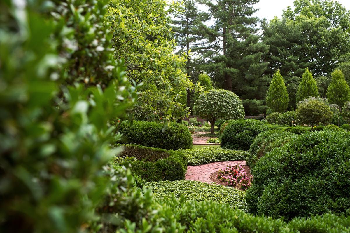 KY Horse Park Arboretum