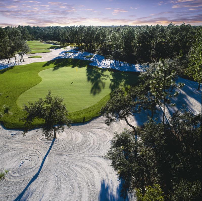 Tiger's Eye Golf
