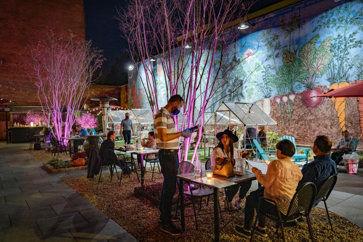Last Resort Patio Garden with Greenhouses