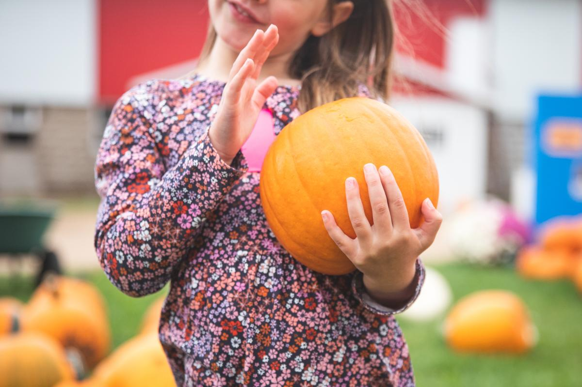 A closeup of a little girl holding a pumpkin at Govin's Farm
