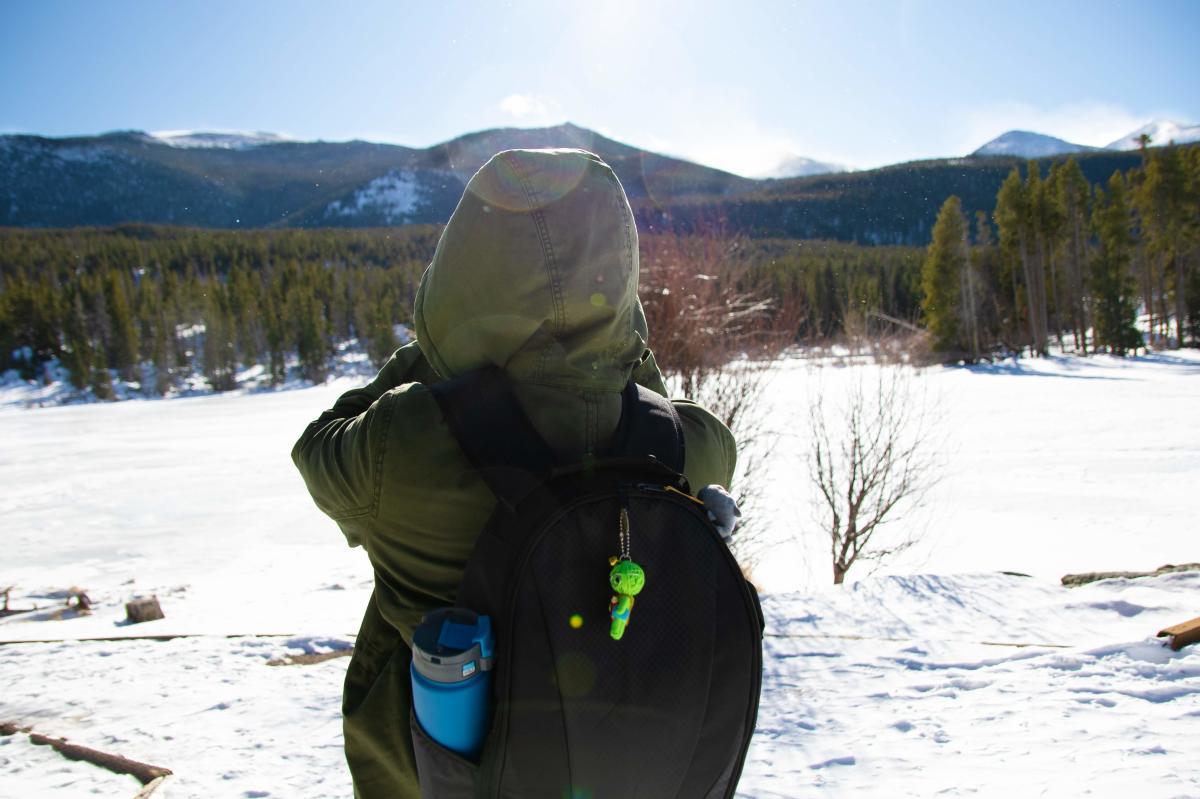 winter nature views