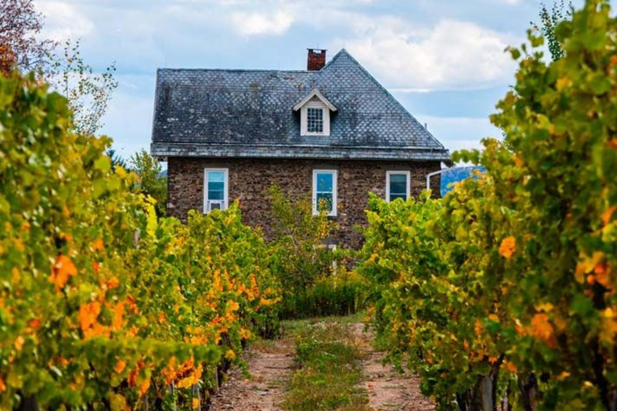 Dr Konstantin Frank Winery in the fall in Finger Lakes Wine Country
