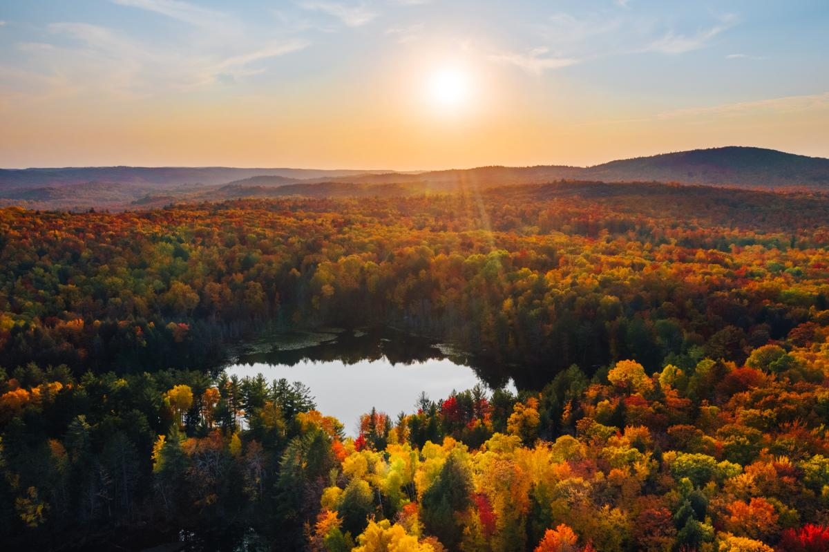 An aerial view of fall color over Harlow Lake in peak autumn