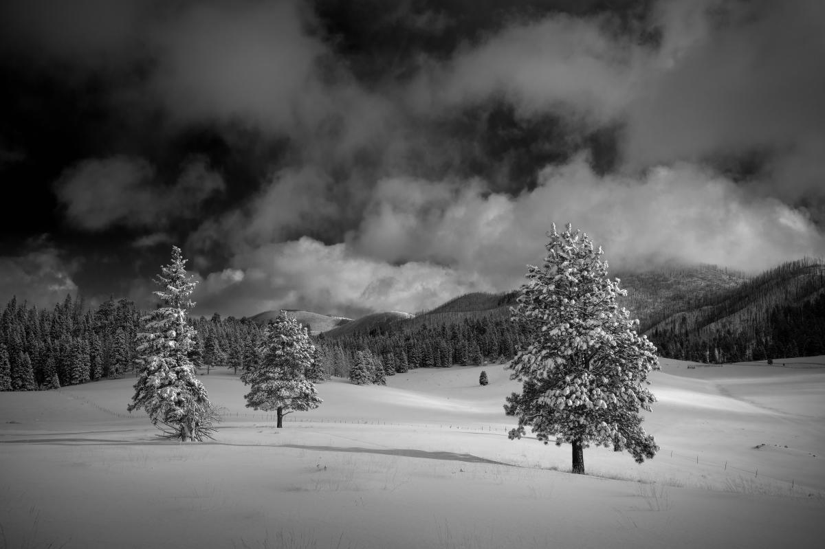 Snow in the Jemez, Photograph by Jim Stein, New Mexico Magazine