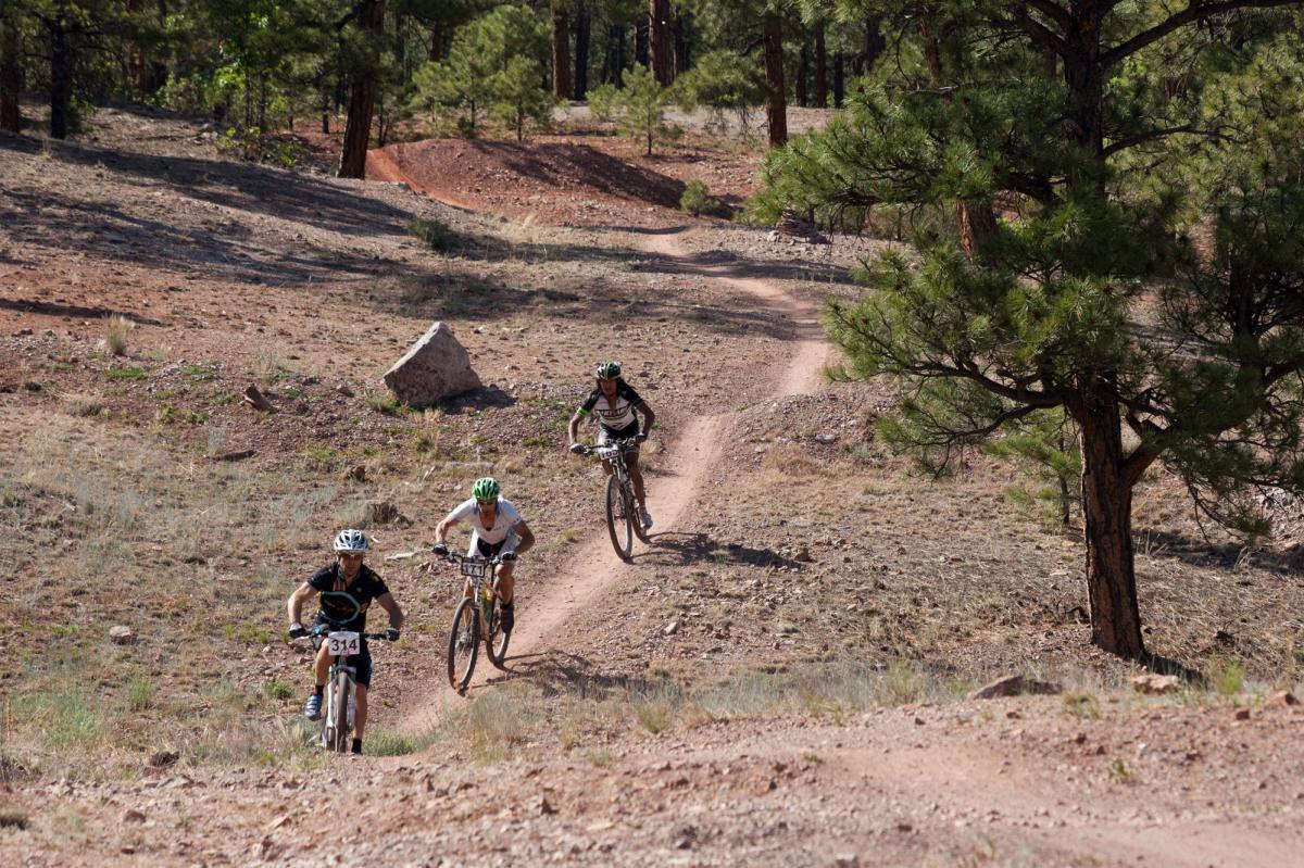 Biking Tour Operators