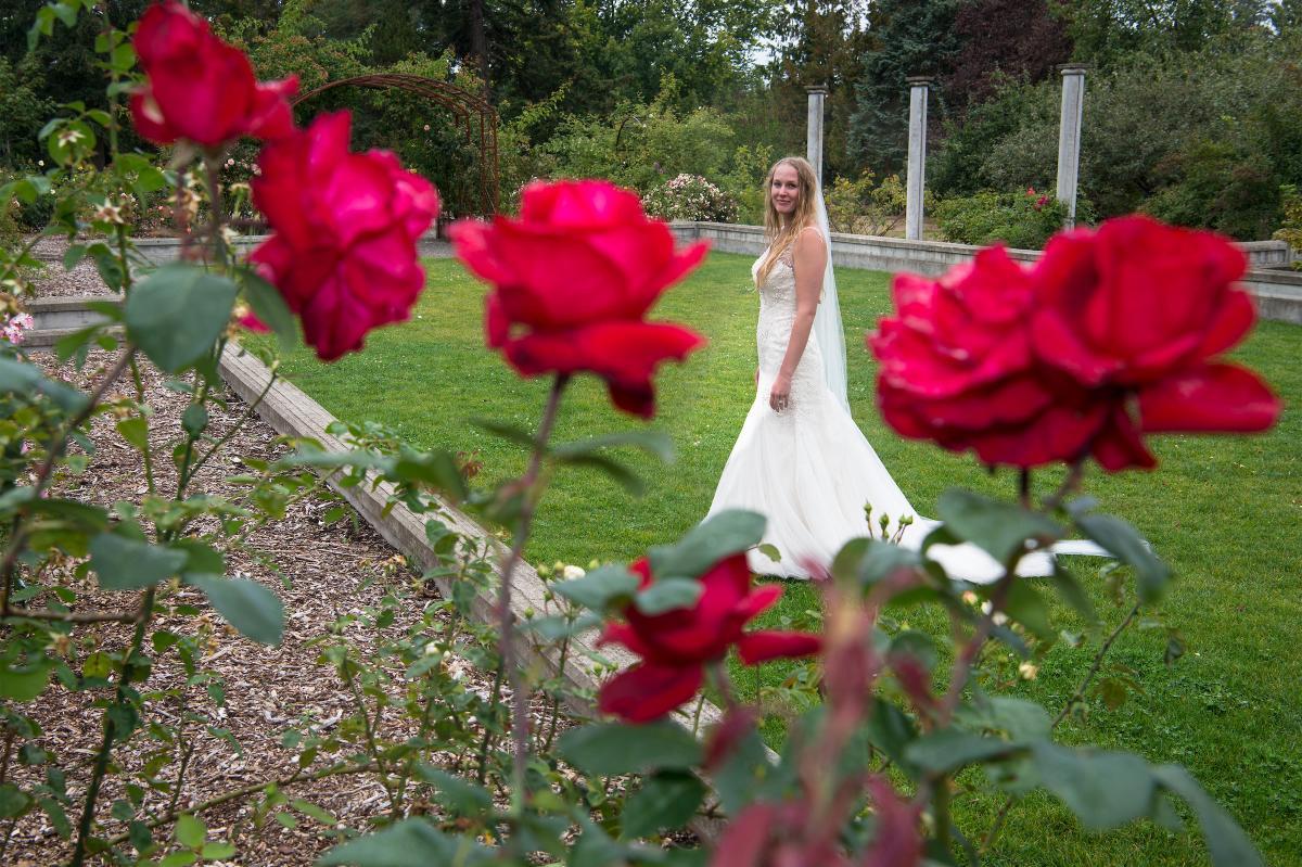 Bride behind roses at botanical gardens