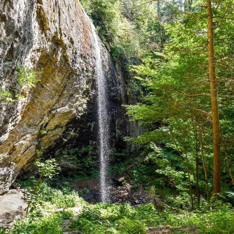 6 Off-the-Beaten-Path Hikes near Asheville, NC