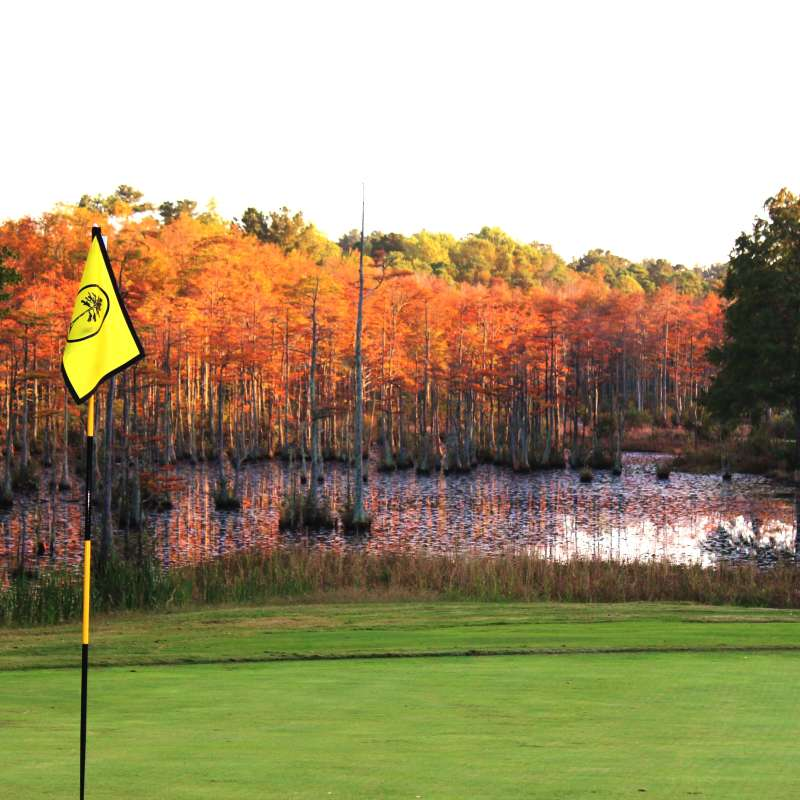 JAMES BRITT_LANDSCAPE_CYPRESS LAKES GOLF COURSE