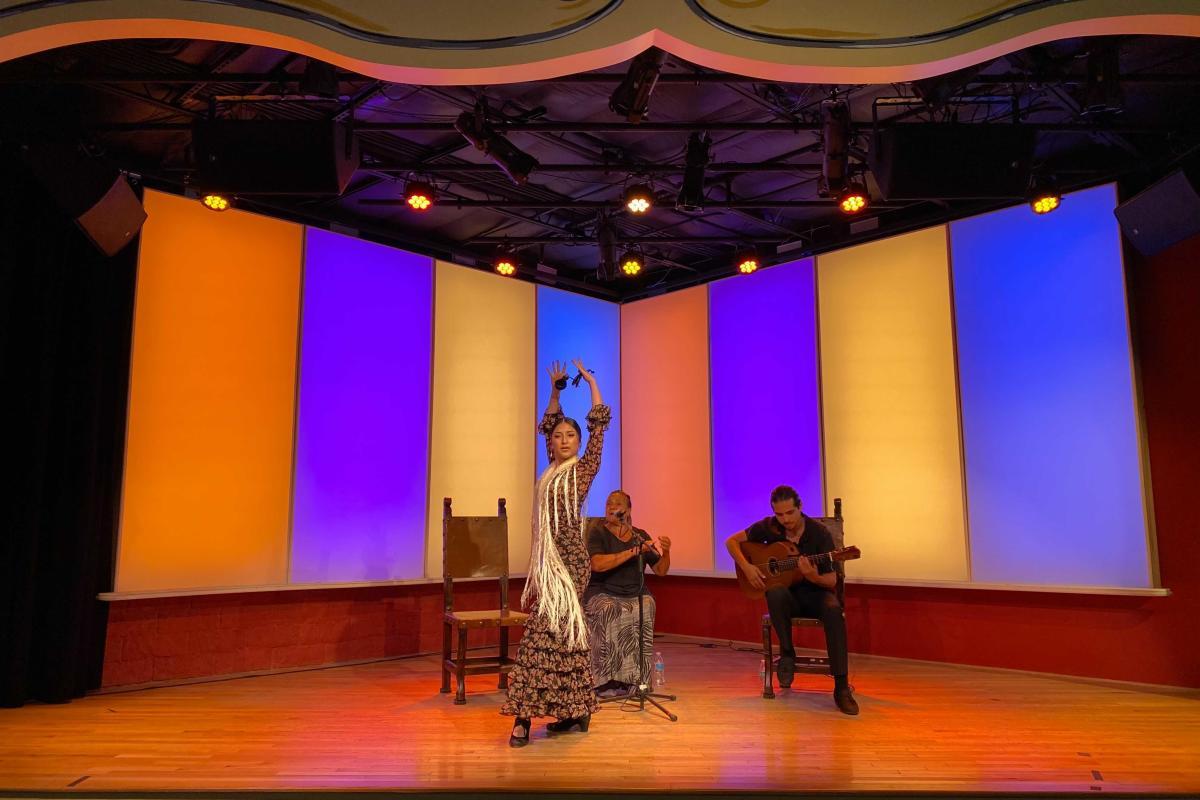 NIF Flamenco Media Mission