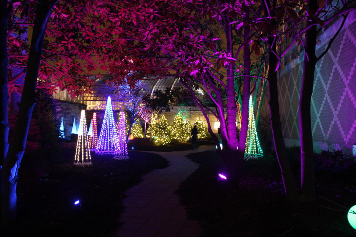 Light Display in Conservatory Aglow at Franklin Park Conservatory and Botanical Gardens