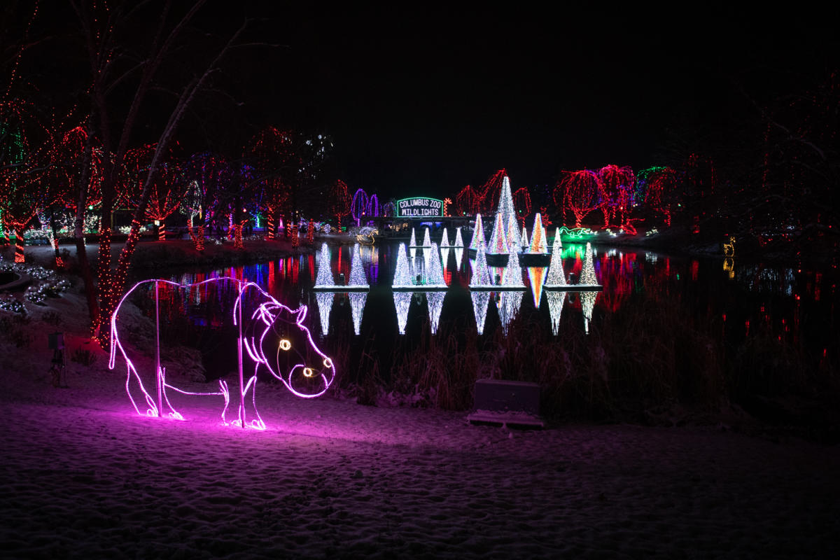 Hippo Wildlights Display at Columbus Zoo in Columbus, OH