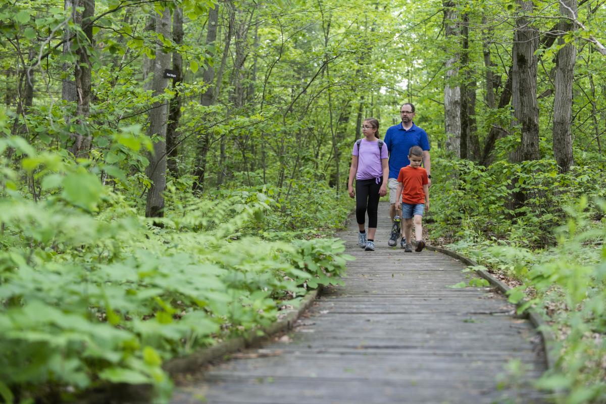 Spencer Crest Family Hike