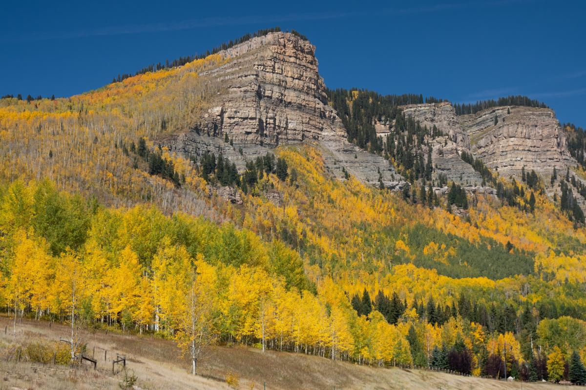Fall Colors at Castle Rock Peak, Durango, CO