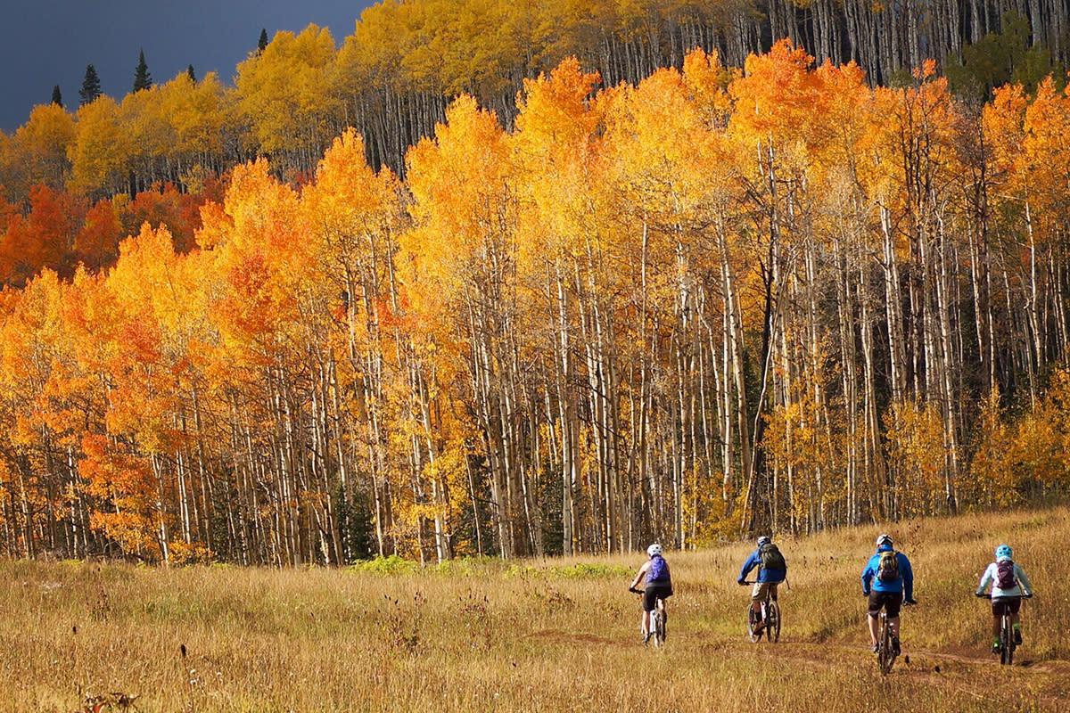 Mountain Biking on Aspen Loop Trail, Durango, CO