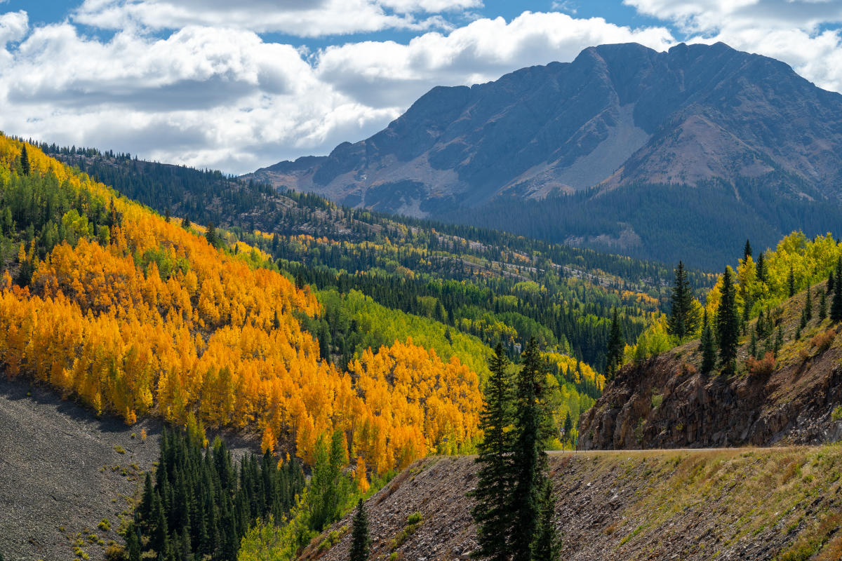 Highway 550 During Fall, Durango, CO