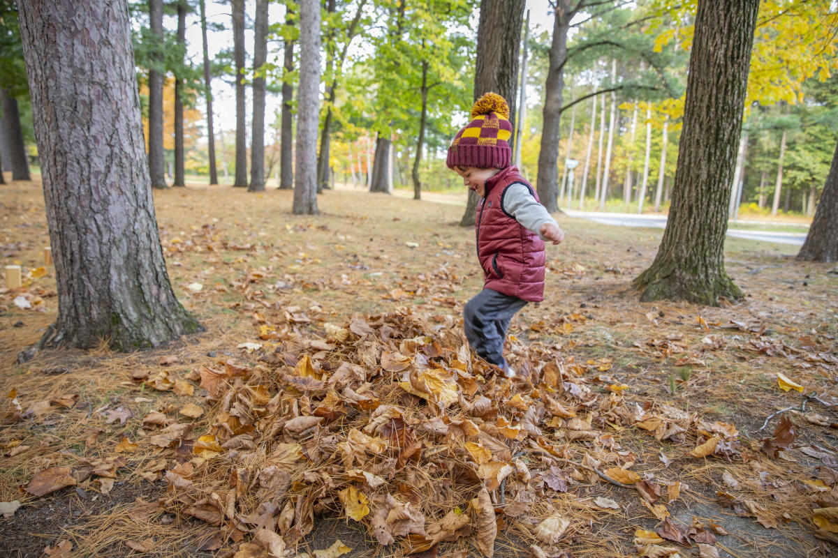 Boy playing in a pile of leaves at Carson Park