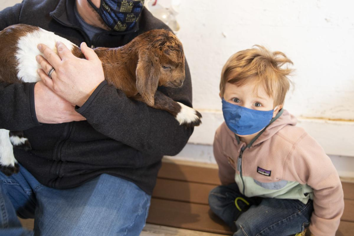 Dad and son holding a baby goat