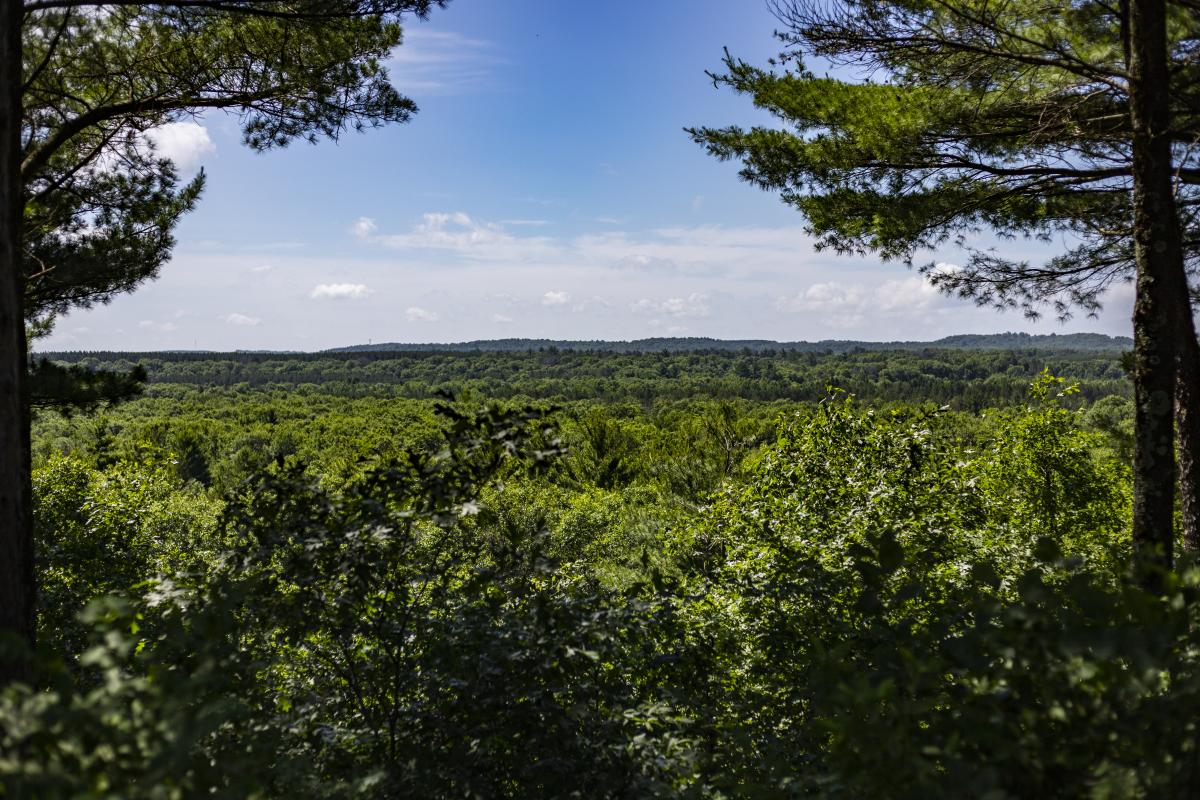 Views from Tower Ridge in the summer