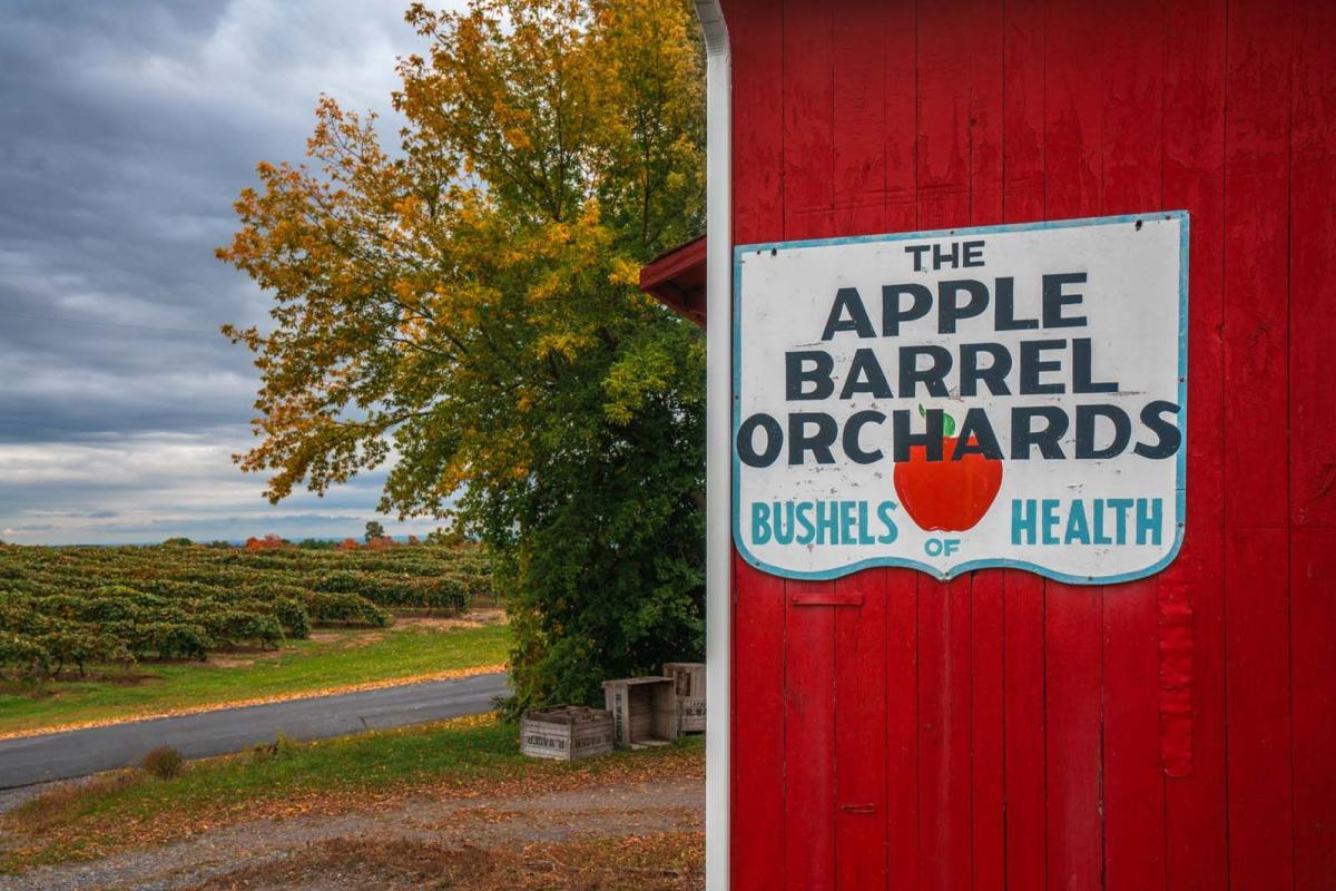 Apple Barrel Orchards in Penn Yan New York farm store and apple picking