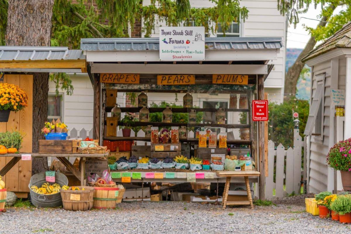 fresh produce at Thyme Stands Still roadside farm stand
