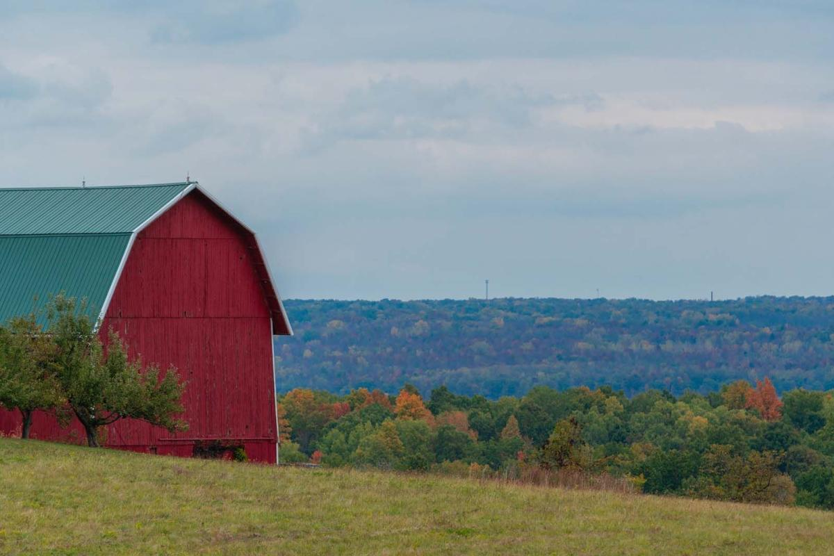 beautiful red barn in Finger Lakes Wine Country New York