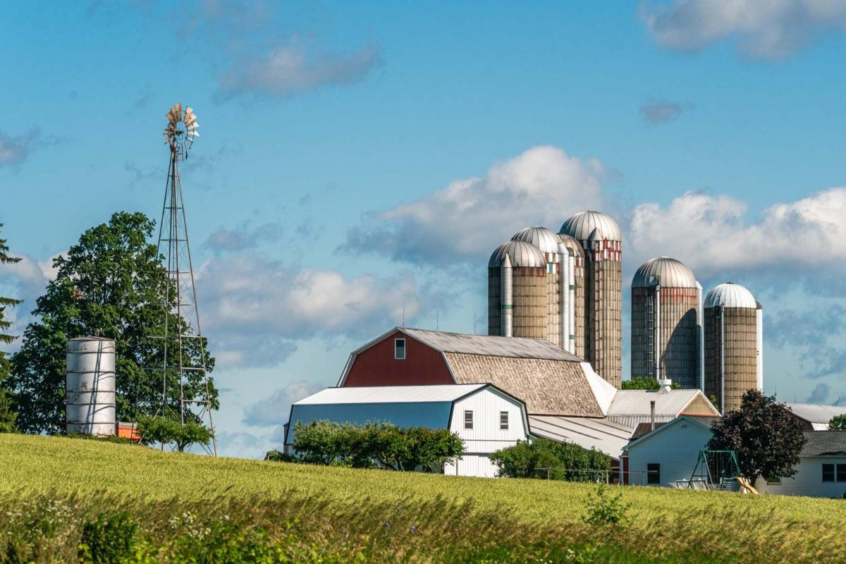 summer farm and barn scene in Finger Lakes Wine Country
