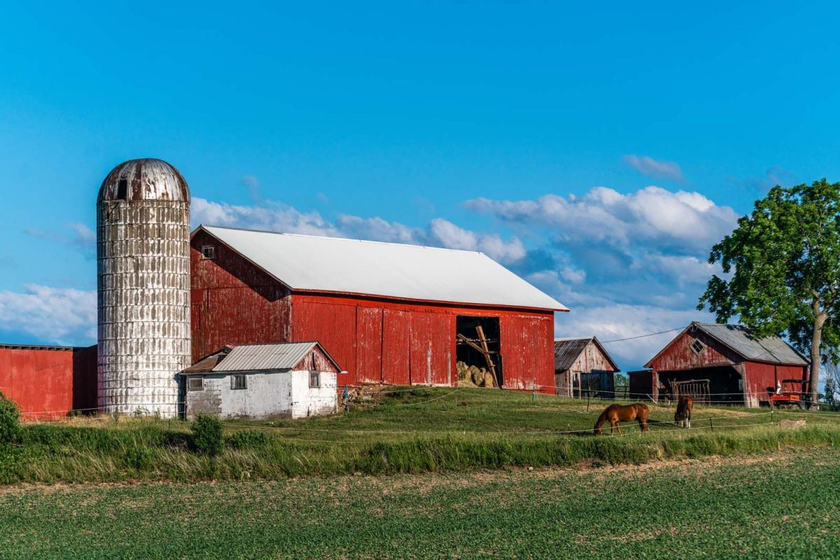 Horses grazing in a pasture by a red barn and farm in finger lakes wine country