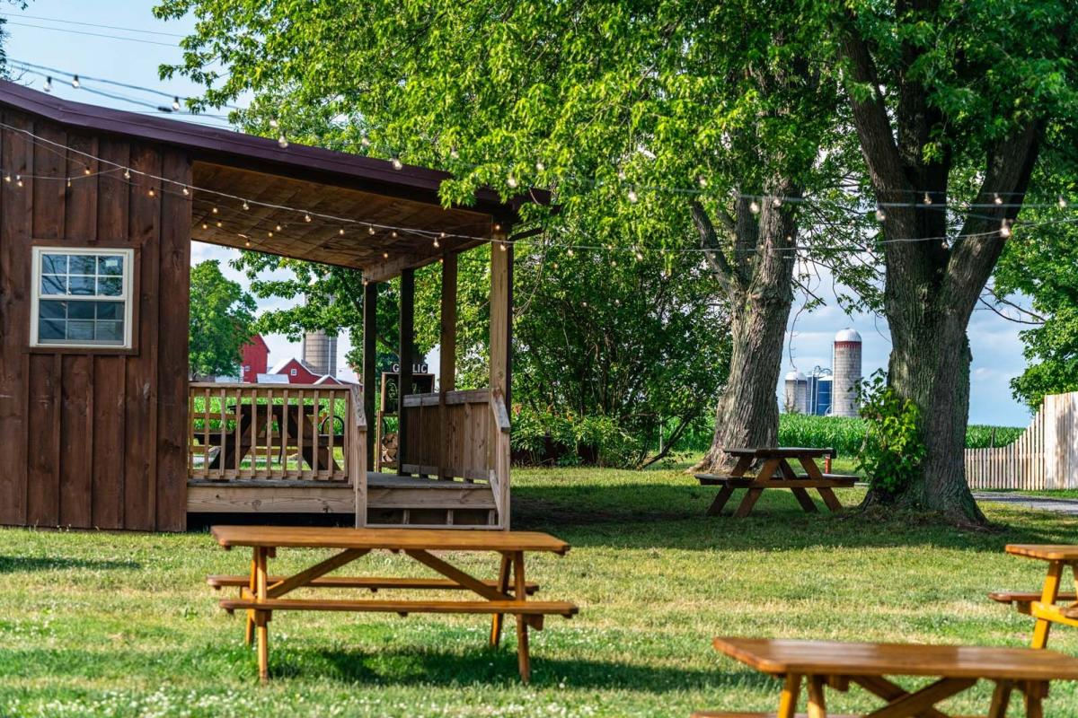 picnic tables at Spotted Duck Creamery in Finger Lakes Wine Country