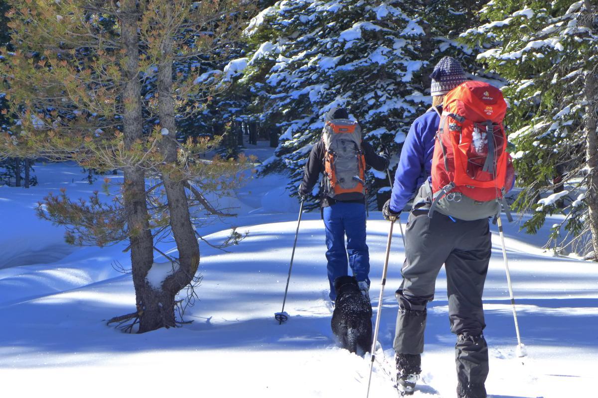 Cross country skiing at Cameron Pass