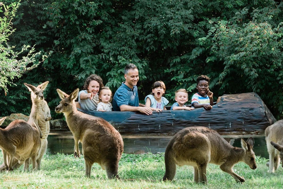 Fort Wayne Children's Zoo Kangaroo and Log Ride Jigsaw Puzzle Photo