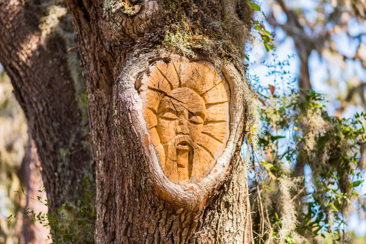 One of the famous and mysterious St. Simons Island Tree Spirits