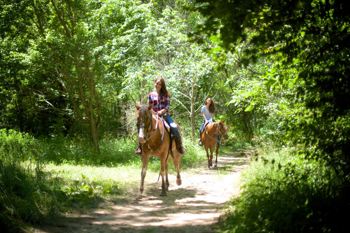 Horse Back Riding at Natural Valley Ranch