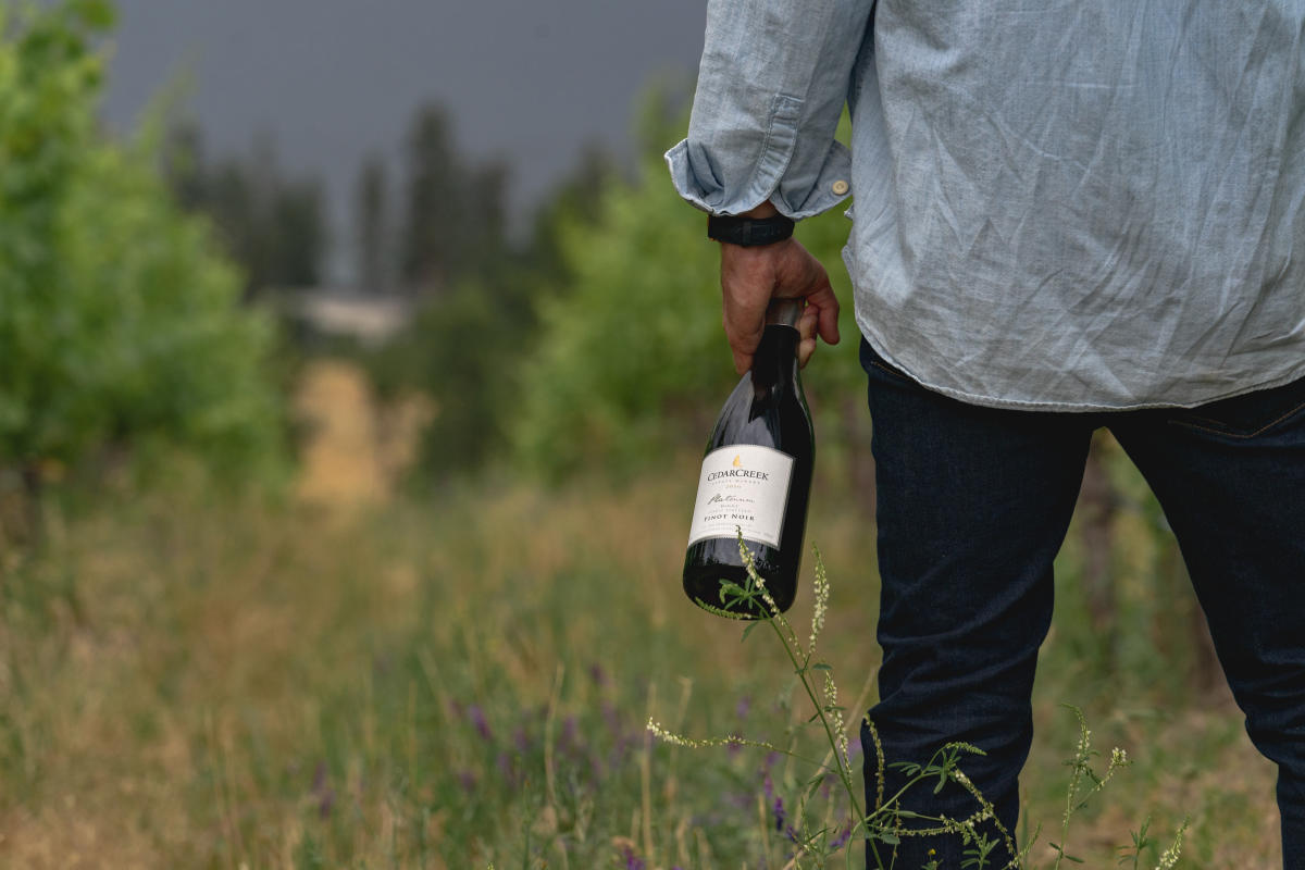 CedarCreek Estate Winery-Man Holding Pinot Noir Bottle
