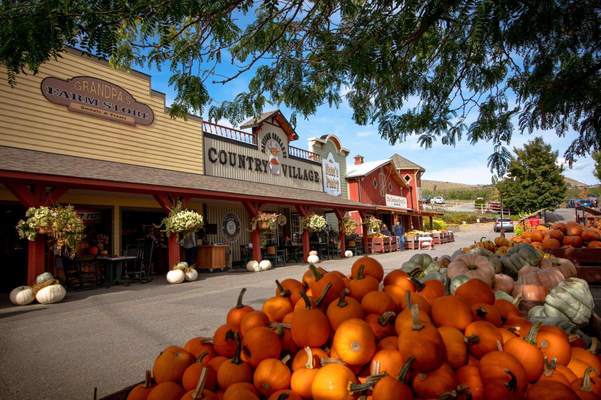 Davison Orchard