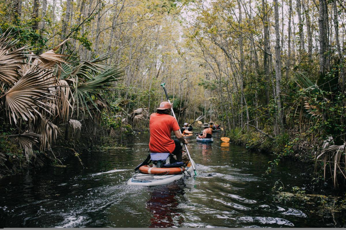 Palmetto Island Canoe Trail