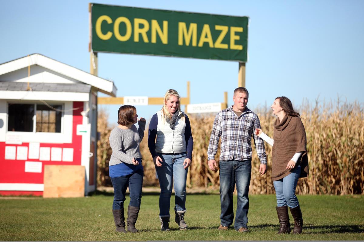 Pearces Farm Stand Corn Maze
