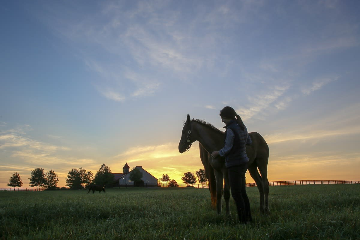 A woman smiles while petting her horse in a field.