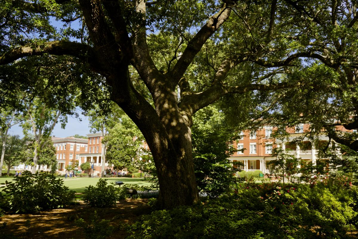 Georgia College campus