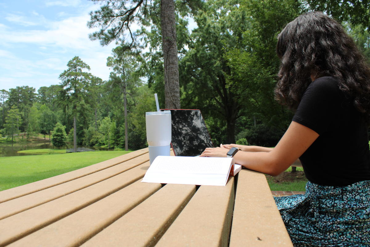 Studying at Lockerly Arboretum